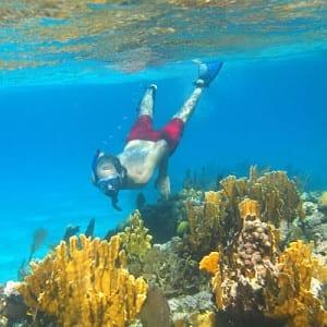 pi-snorkeling-reef